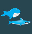 shark and whale vector image