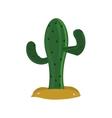 single cactus icon vector image