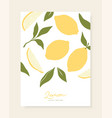 stylish cover design with lemon fruits vector image vector image