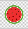 watermelon icon juicy ripe fruit on isolated vector image vector image