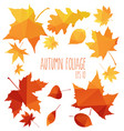yellow wet autumn leaves on the background a dark vector image