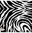 zebra background with black stripes vector image vector image
