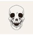 sketch bones of the head vector image