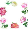 Background with red roses-03 vector image vector image