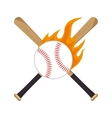 baseball equipment emblem sport vector image vector image