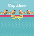 Delicate baby shower card with little birds vector image vector image