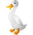 duck funny cartoon vector image