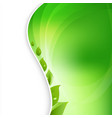 eco leaves on natural background vector image vector image