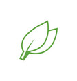 green leaf icon graphic design template vector image vector image