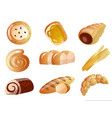 set of baked goods with different types of bread vector image vector image