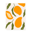 stylish cover design with mango fruits vector image vector image
