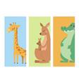 cute zoo cartoon animals cards funny wildlife vector image vector image