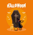 halloween card with death coffin vector image vector image