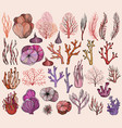 set of marine hand drawn corals silhouettes vector image vector image