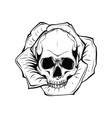 skull and roses flowers hand drawn vector image vector image