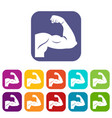 biceps icons set vector image vector image
