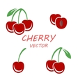 flat cherry icons set vector image