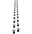 paw trail paw prints animal cat dog footprints vector image vector image