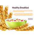 healthy breakfast banner or background vector image vector image
