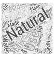 How to Prepare Natural Insecticide Word Cloud vector image vector image
