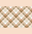 plaid diagonal fabric texture seamless pattern vector image vector image