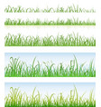 seamless green grass layers vector image