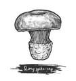 spike-cap or slimy spike cap sketch mushroom vector image vector image