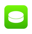 washer hockey icon green vector image vector image
