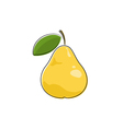 Yellow Pear Isolated on White vector image vector image