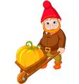 Garden Gnome with wheelbarrow vector image
