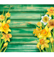 daffodils flowers on wooden background vector image vector image