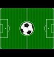 Futbool stadium vector image