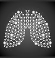 human lungs isolated on a black background vector image vector image