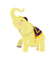 indian elephant in hat and cloak raises trunk vector image