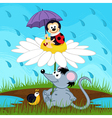 mouse ladybug snail hiding from rain vector image