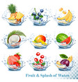 big collection of fruit in a water splash vector image vector image