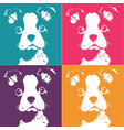 boston terrior pop up vector image
