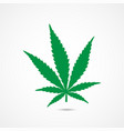 cannabis icon vector image