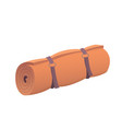 orange camping rolled mat vector image vector image
