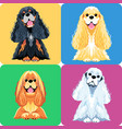 set dog icon flat design vector image