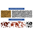 set leopard and cow pattern print texture vector image vector image
