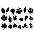 autumn leaf silhouettes vector image