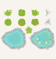 lake and trees set in top view pond decorative vector image