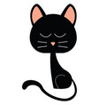 black cat on white background vector image vector image