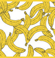 hand drawn banana fruit seamless pattern vector image vector image