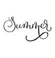 summer lettering on white background travel vector image