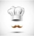 Accessories cook vector image