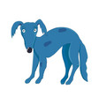 blue spotted dog isolated on white background vector image