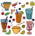 different types of tea vector image vector image