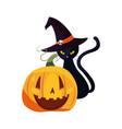 happy halloween celebration vector image vector image
